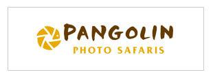 pangolin photo safari case study