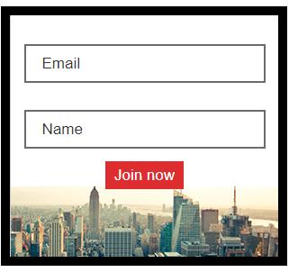 Newsletter form for lead capture